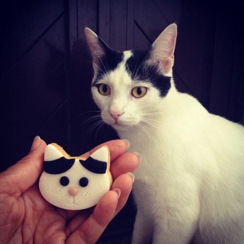 ponyo cookies