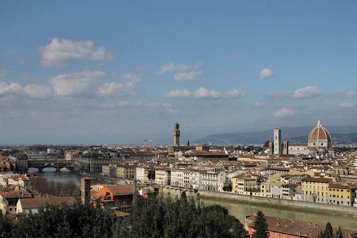 Firenze nitidaB