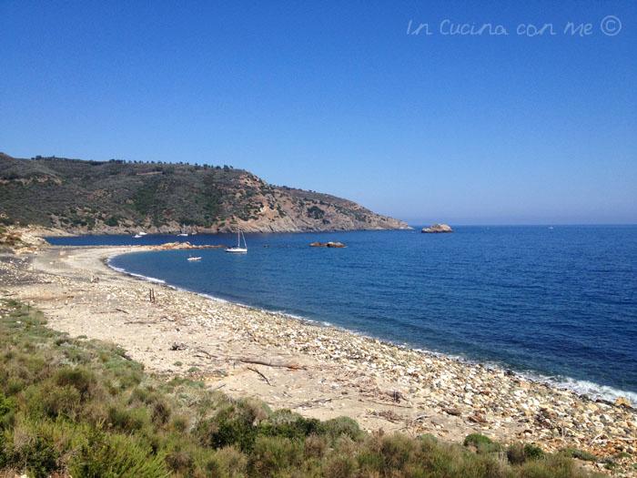Punta Calamita