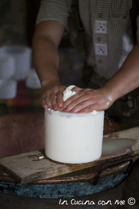 Pressatura-del-formaggio-