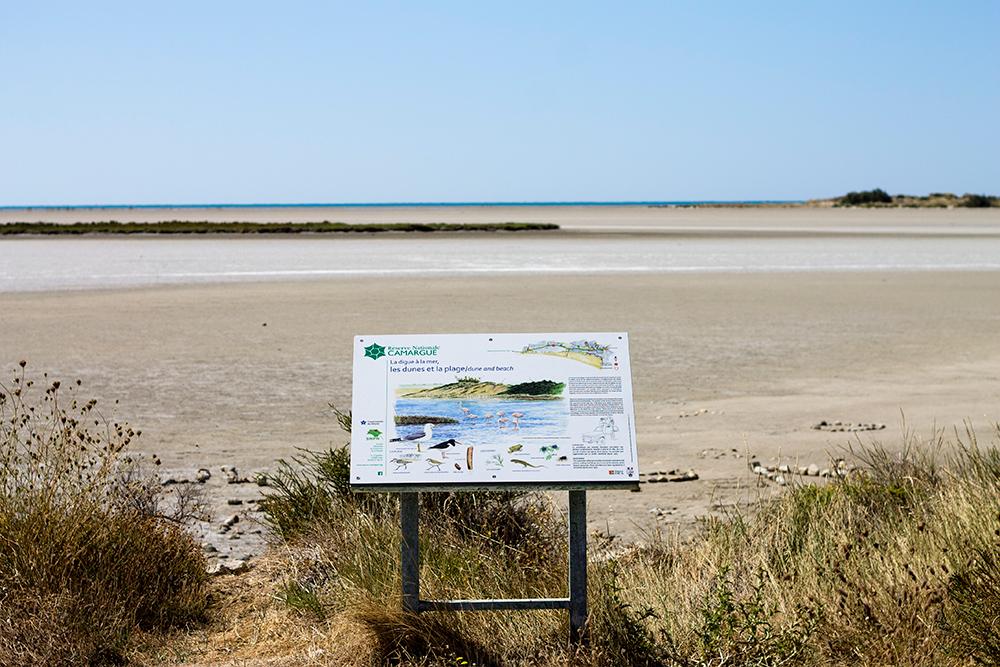 Spiaggia di Beaduc - Camargue