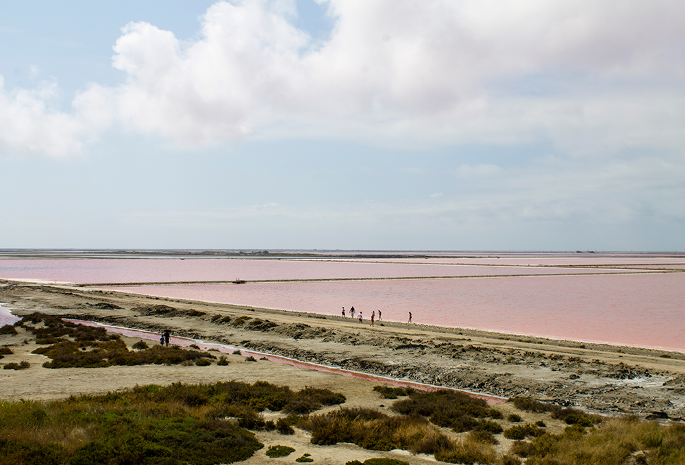 Le immense saline rosa di Giraud - Camargue