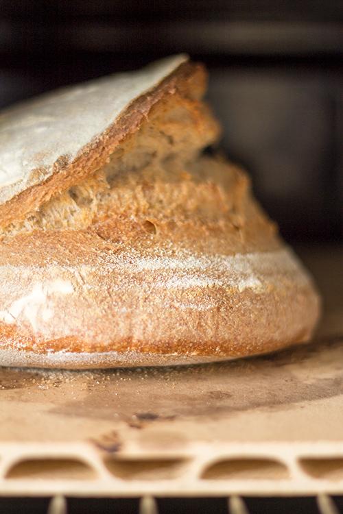 Pane in cottura su pietra refrattaria
